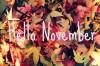 Ноябрьские скидки 2016!