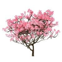 Весенние скидки на фильтры Sakura!